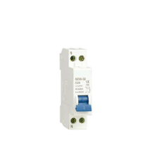 DZ30-32(DPN)Mini Circuit Breaker